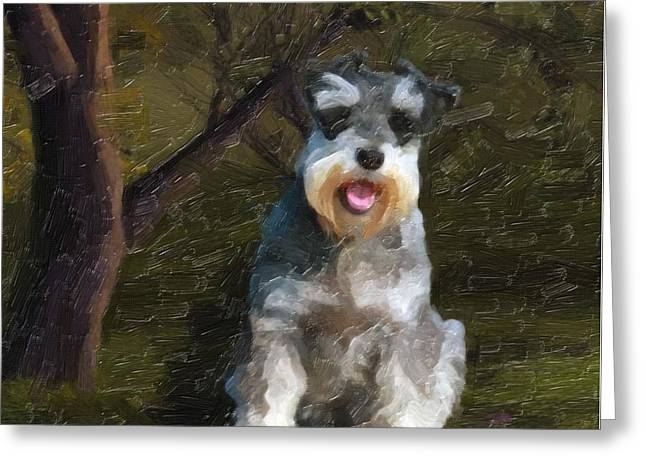 The Schnauzer Greeting Card by Tilly Williams