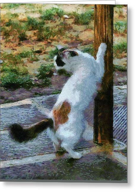 The Scratching Post Greeting Card by Dorothy Berry-Lound