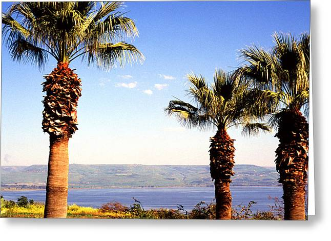 Sea Of Galilee Greeting Cards - The Sea of Galilee from the Mount of the Beatitudes Greeting Card by Thomas R Fletcher