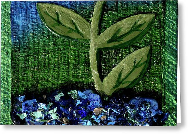 The Seedling Greeting Card by Donna Blackhall