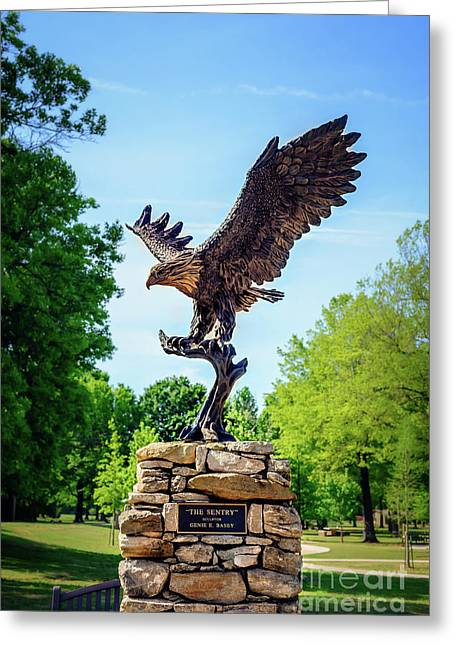 The Sentry At Honor Heights Park Greeting Card by Tamyra Ayles
