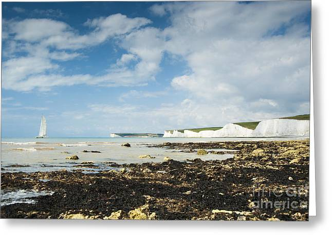 The Seven Sisters Greeting Card by Donald Davis