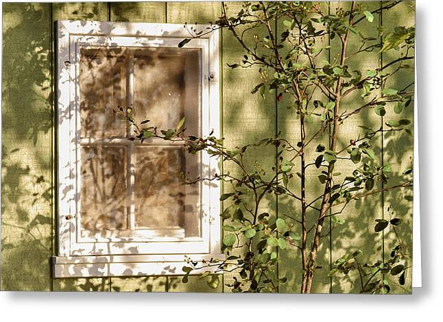 The Shed Window Greeting Card