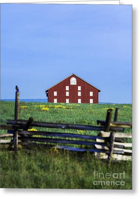 The Sherfy Farm At Gettysburg Greeting Card by John Greim