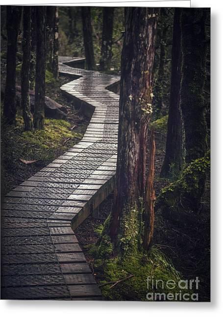 The Shining Path Greeting Card