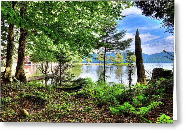Greeting Card featuring the photograph The Shore At Covewood by David Patterson