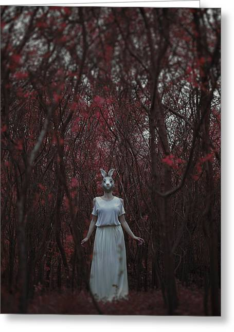The Silence Of The Woods Greeting Card by Art of Invi