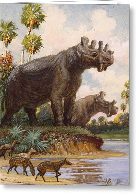 The Six-horned Uintatheres Thrived Greeting Card by Charles R. Knight