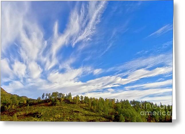 The Skies Greeting Card by Heiko Koehrer-Wagner