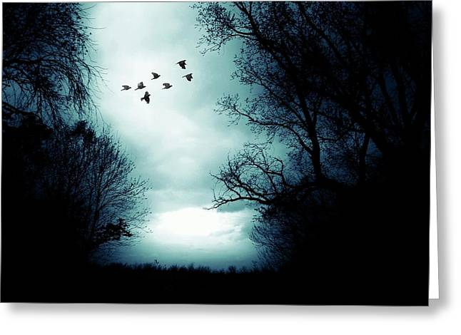 The Skies Hold Many Secrets Known Only To A Few Greeting Card by Michele Carter