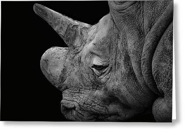 The Sleepy Rhino Greeting Card