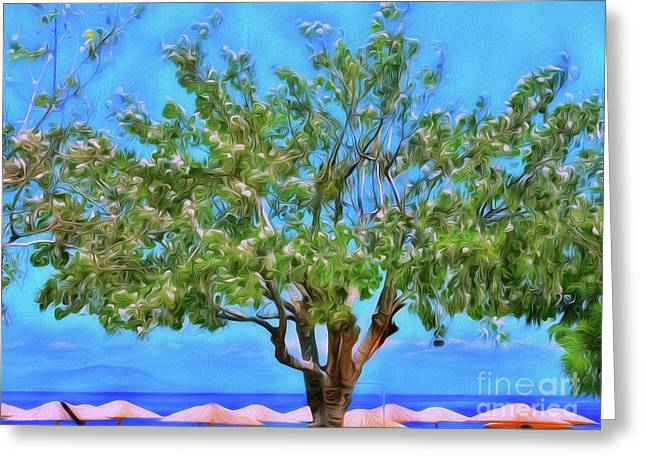 Greeting Card featuring the photograph The Smiling Tree Of Benitses by Leigh Kemp