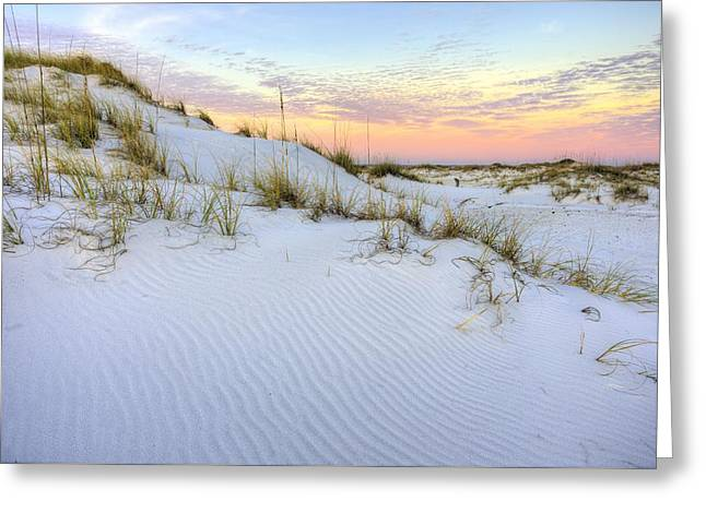 The Snow White Dunes Of The Panhandle Greeting Card by JC Findley