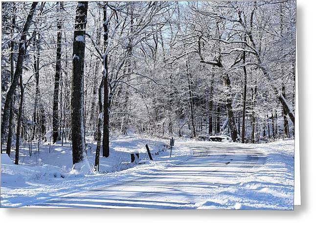The Snowy Road 1 Greeting Card