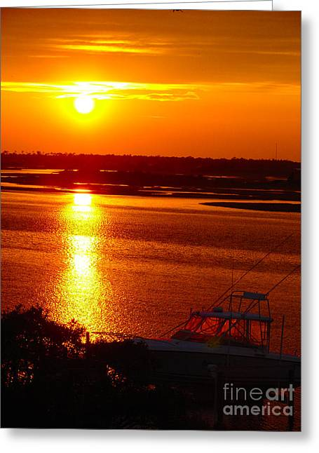 The Sound Of Sunset Greeting Card by Laura Brightwood