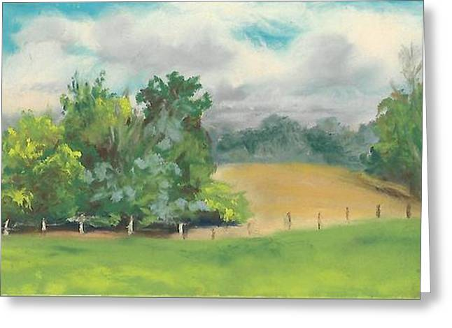 The South Field Greeting Card by Terri  Meyer