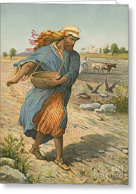 Parable Greeting Cards - The Sower Sowing The Seed Greeting Card by English School