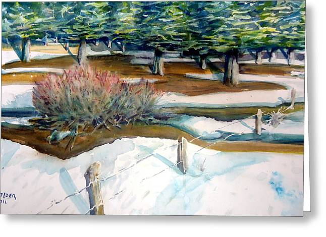 The Spring Thaw Greeting Card by Steven Holder
