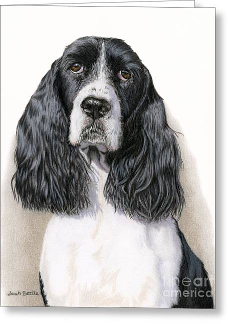 The Springer Spaniel Greeting Card by Sarah Batalka