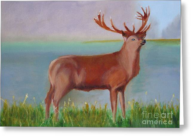 The Stag Greeting Card by Rod Jellison