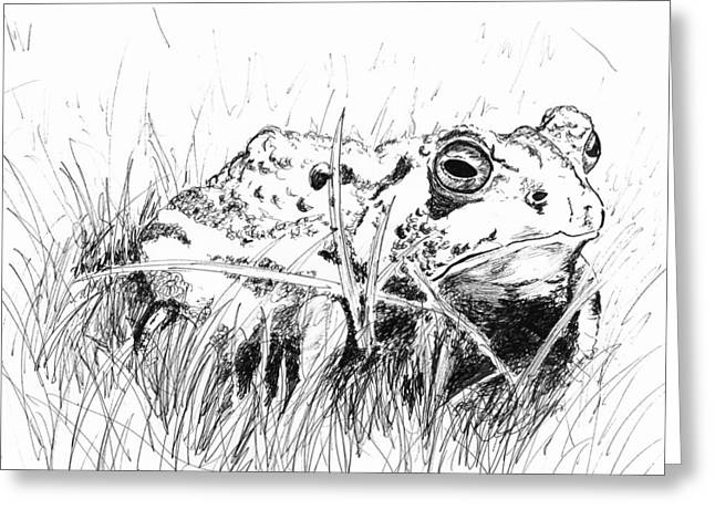 The Stalwart Old Toad Greeting Card