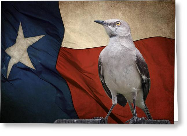 The State Bird Of Texas Greeting Card