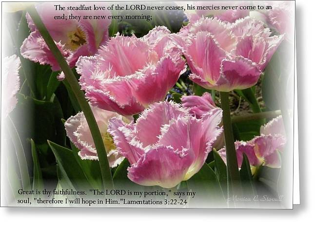 The Steadfast Love Of The Lord Never Ceases... Greeting Card