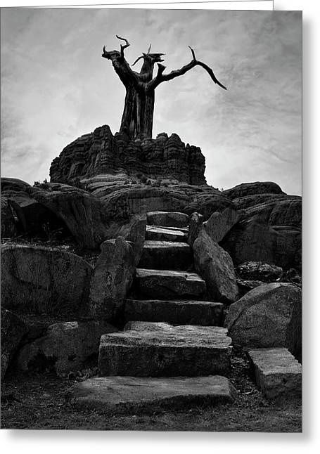 The Stone Steps II Bw Greeting Card by David Gordon