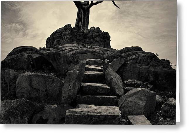 The Stone Steps II Toned Greeting Card by David Gordon