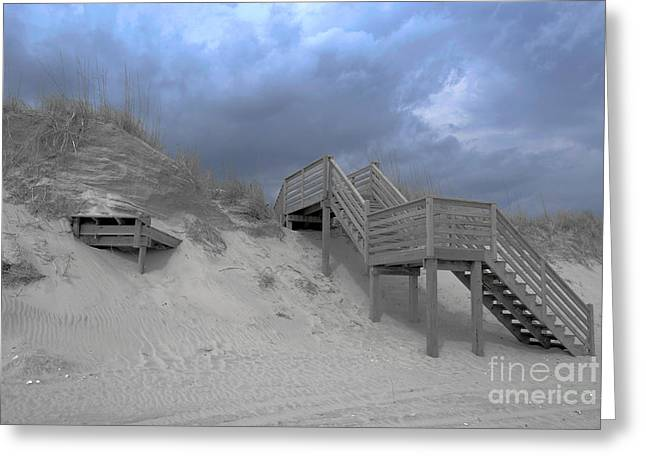 The Storm Is Here Greeting Card by Linda Mesibov
