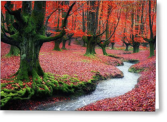 The Stream Of Life Greeting Card