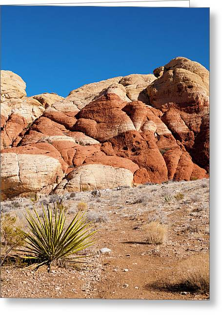 The Striped Rock Greeting Card by Rae Tucker