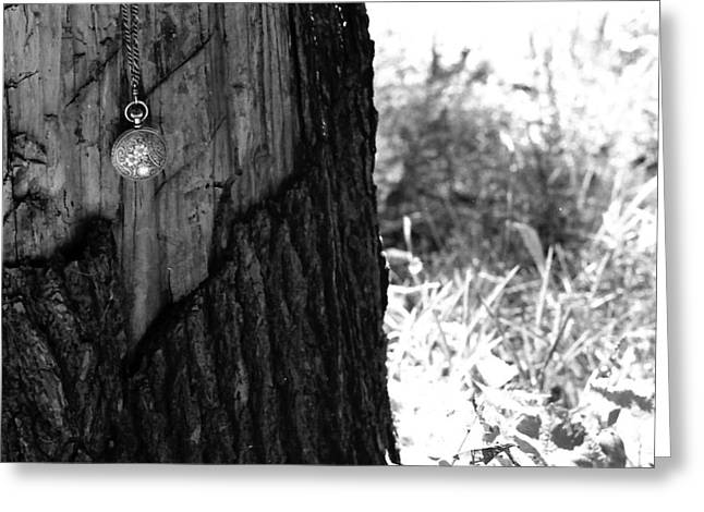 Greeting Card featuring the photograph The Stump Of Time by Don Youngclaus