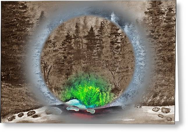 The Sublime Forest Number Five Greeting Card by Scott Haley