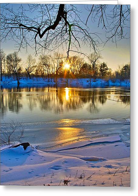 The Sunny Side Greeting Card by Robert Pearson