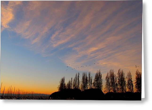 The Sunrise Greeting Card by John King