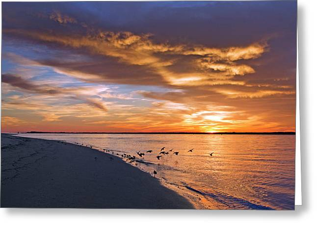 The Sunset Movie Greeting Card by Betsy Knapp