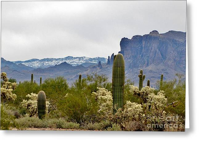 The Superstitions  Landscape Greeting Card by Marilyn Smith