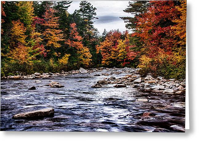 The Swiftriver Through The Fall Colors Greeting Card by Jeff Folger