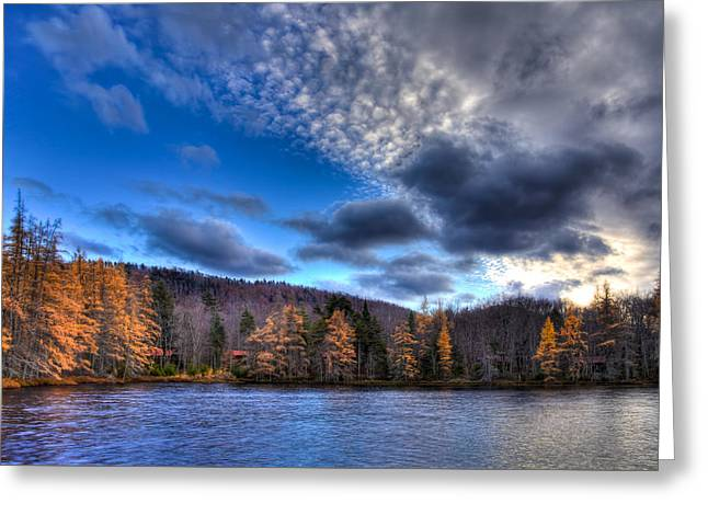 The Tamaracks On Lake Kan-ac-to Greeting Card by David Patterson