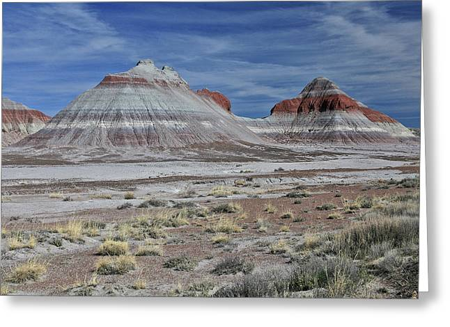 the TeePees Greeting Card by Gary Kaylor