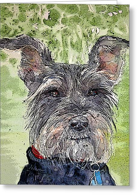 The Terrier Greeting Card