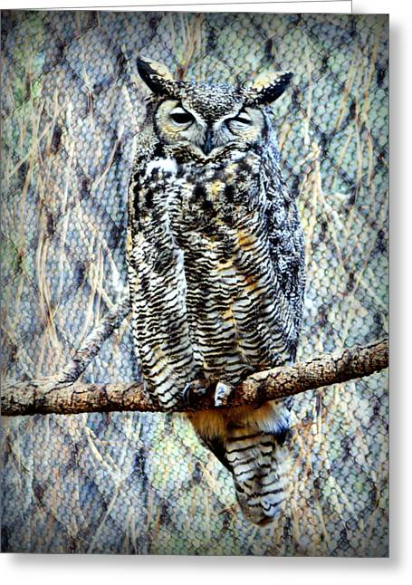 Greeting Card featuring the photograph The Textured Owl by AJ Schibig