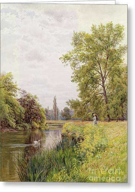 The Trees Greeting Cards - The Thames at Purley Greeting Card by William Bradley