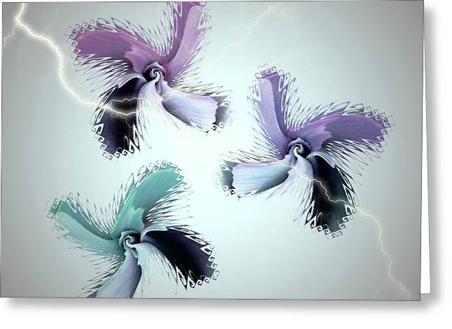 The Thunderbolt Dance Of Rose Butterflies - 3 Greeting Card by Jacqueline Migell