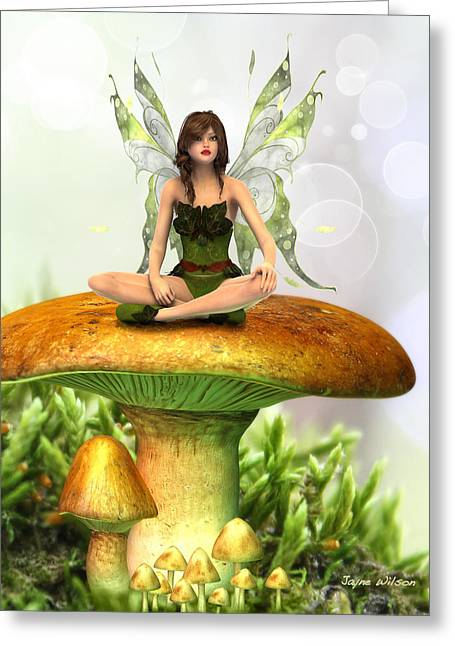 The Toadstool Fairy Greeting Card