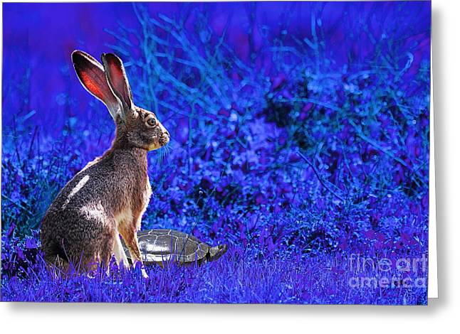 The Tortoise And The Hare . Blue Greeting Card by Wingsdomain Art and Photography