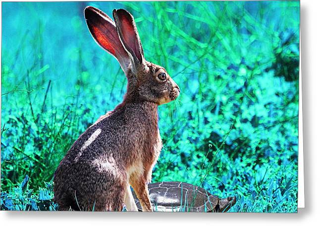 The Tortoise And The Hare . Cyan Square Greeting Card by Wingsdomain Art and Photography