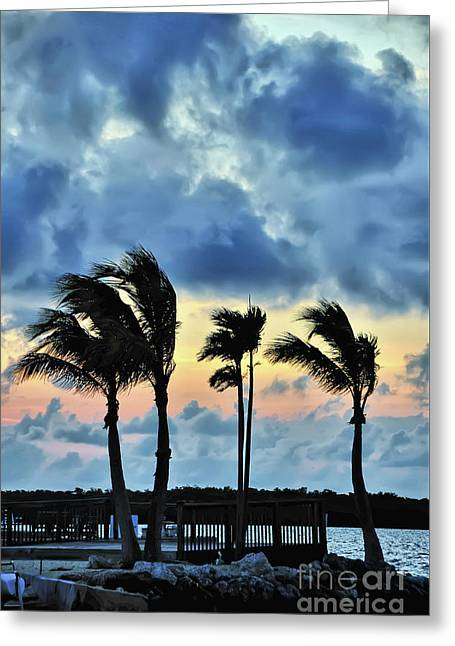 The Tradewinds Greeting Card
