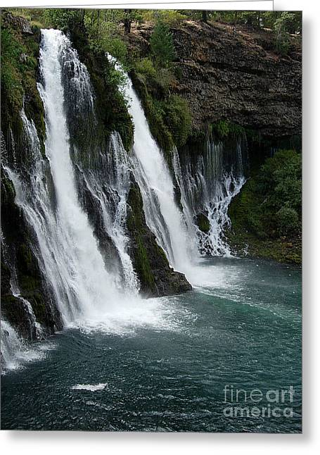 The Tranquility Of Waterfalls Greeting Card by Stephanie  H Johnson
